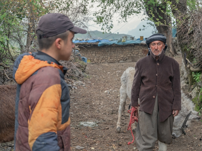 In the early morning, a son and father in Gulan village in Rania city were going to the mountains to
